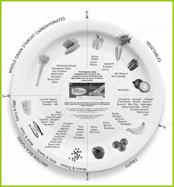 Fertility Food Wheel New Forest Nutritionist